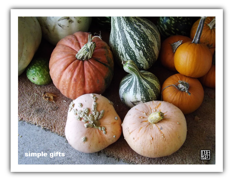 (Photo - Autumn harvest.... Simple Gifts!)